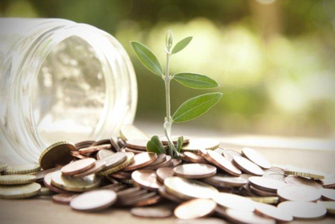 """La """"flat tax"""" sur l'Assurance vie pourrait entrée en vigueur dès le 27 septembre. © Shutterstock"""