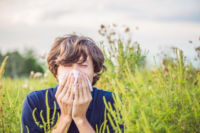 Appelée « rhume des foins », rhinite allergique ou pollinose, l'allergie aux pollens affecte près de 30% des Français . © Shutterstock