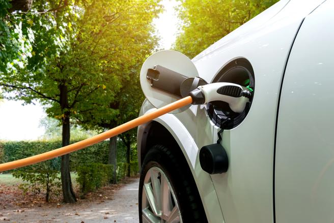 Le segment du véhicule électrique progresse chaque année sur le marché mondial.