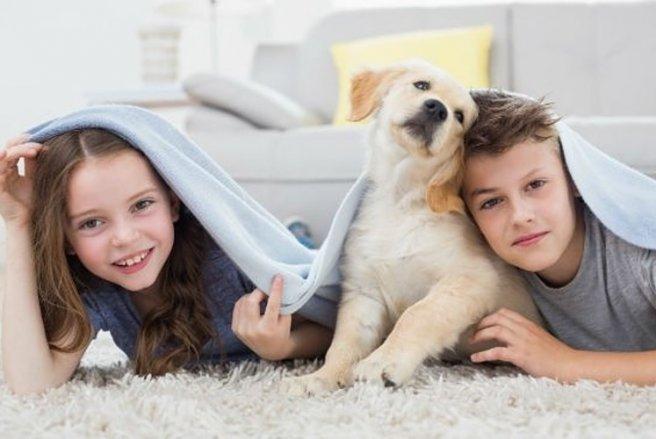 Avoir un chien permet de réduire l'anxiété chez l'enfant