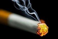 La tabac c'est tabou !