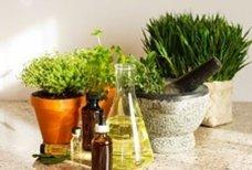 Conseils et astuces pour se soigner avec les plantes sans se ruiner