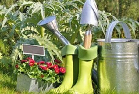 Jardinage bricolage - Que faire au jardin en novembre ...
